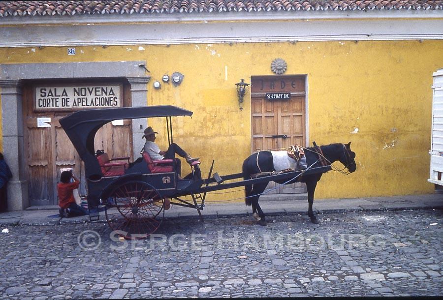 Fiacre au Guatemala